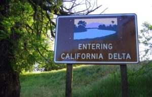 "A sign reading ""Entering California Delta"" next to a tree in the Sacramento-San Joaquin Delta"