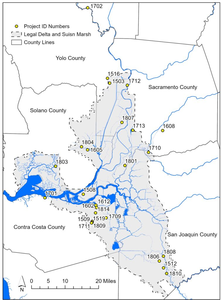 Map shows the locations of funded projects through the Sacramento-San Joaquin Delta Conservancy's Proposition 1 Grant Program within the Legal Delta and Suisun Marsh. Major waterways such as the Suisun Bay, Sacramento River, and San Joaquin River are shown in blue. The Delta Conservancy's service area is the Sacramento-San Joaquin Delta and Suisun Marsh in Northern California. This area contains parts of Yolo County, Solano County, Sacramento County, San Joaquin County, Contra Costa County, and Alameda County. The Delta Conservancy has funded a five projects in Yolo County (1503, 1516, 1702, 1712, 1807), three projects in Solano County (1605, 1803, 1804), five projects in Sacramento County (1508, 1608, 1712, 1710, 1801), four projects in San Joaquin County (1512, 1806, 1808, 1810), and nine projects in Contra Costa County (1509, 1519, 1602, 1612, 1701, 1709, 1711, 1809, 1814). Project 1702 is located outside of the legal boundary of the Delta, but direct benefits the Delta. Three projects (1813, 1718, and 1505) are not mapped due to their large spatial coverage.